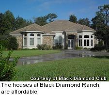 Black Diamond Ranch - houses