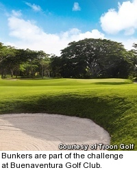 Buenaventura Golf Club - hole 12