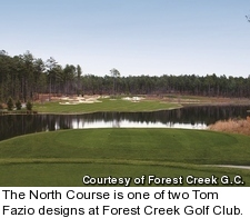 Forest Creek Golf Club - North Course - hole 15