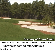 Forest Creek Golf Club - South Course - hole 6