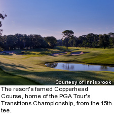 Copperhead Course at Innisbrook - 15th tee