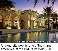 Old Palm Golf Club - pool