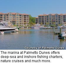 Palmetto Dunes - marina