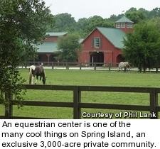 Spring Island - horses